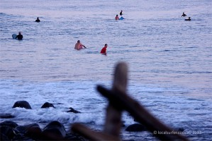 surfer (4)